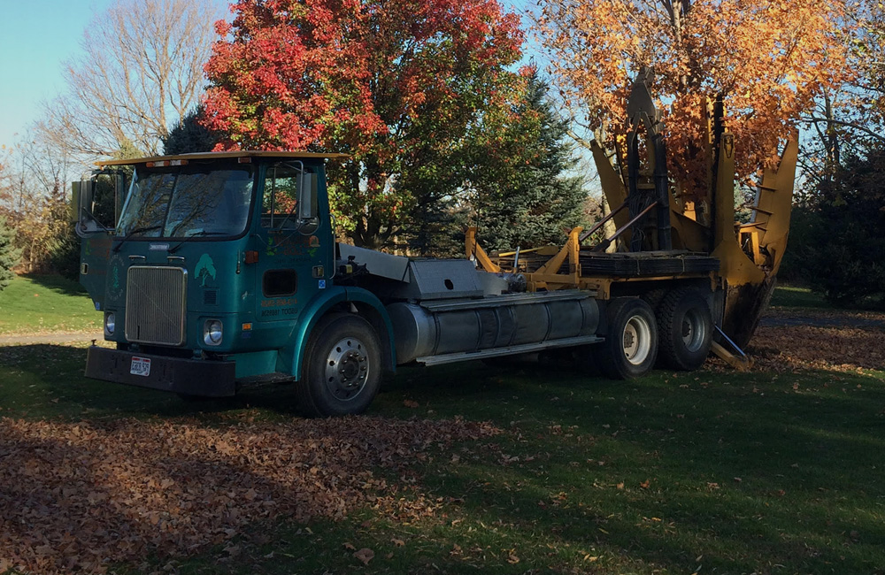 Moving Your Trees Northwest Ohio | Big Trees On The Move